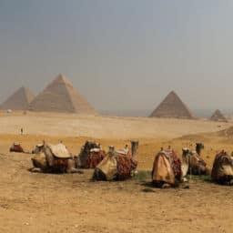 IMG 9034 w850 h567 256x256 - Tu viaje soñado a Egipto y Mar Rojo